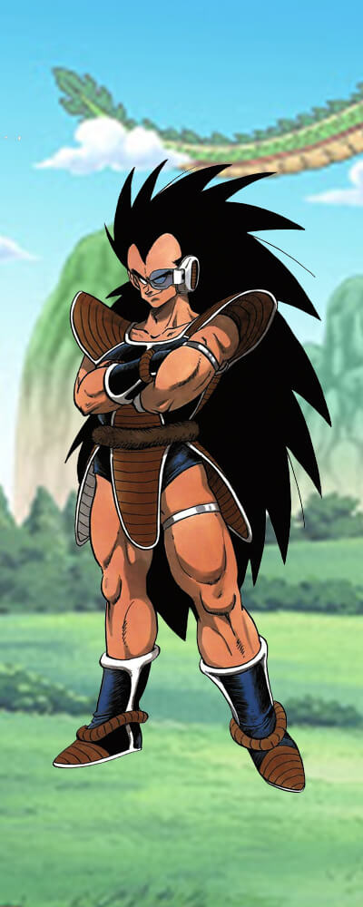 Main Points of Raditz Figures image